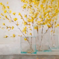 Three Forsythias