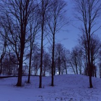 Richard Cofrancesco - Winter-Moonrise