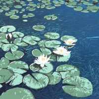 William Hays - Water-Lilies