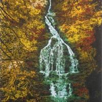 Deep Wood Falls