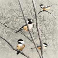 4 Chickadees