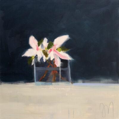 Magnolia Cuttings