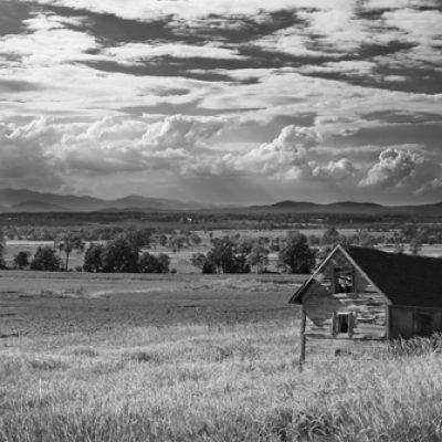 Addison Landscape 1