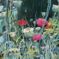 Poppies at Giverny