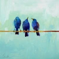 Blue Starlings