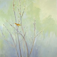 Migrant in the Willows