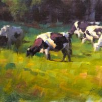 Cows Grazing #2