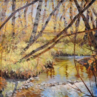 Bruce Park - Bozeman Creek