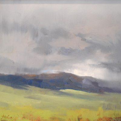 Jerolyn Dirks - Bridger Storm III