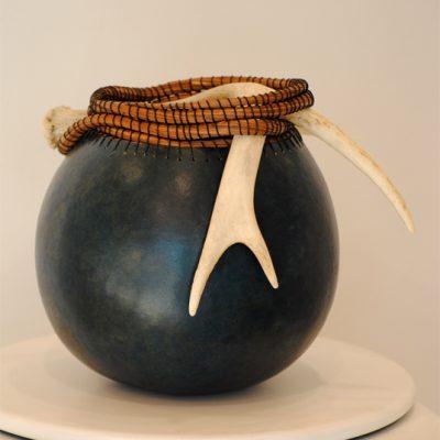 Blue Antler Gourd