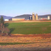 Moody Meadows Farm