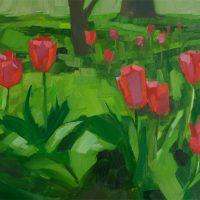Spring Tulip Bloom