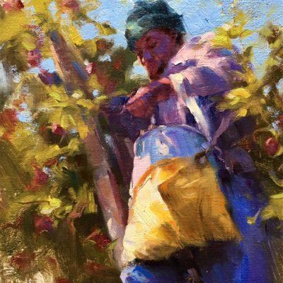 Jamaican Apple Picker