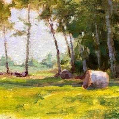 Late Summer Hay