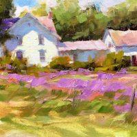Purple Wildflowers