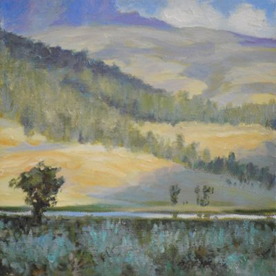 Yellowstone - Lamar Valley