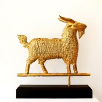 Golden Billy Goat