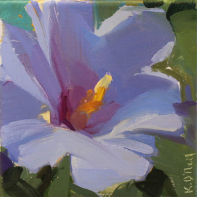 Rose of Sharon Blue/Violet
