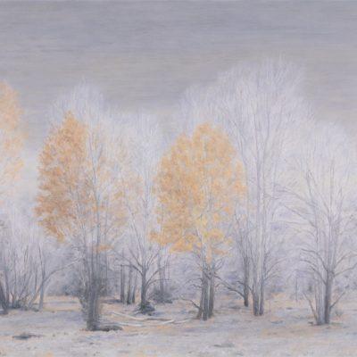 Fall Trees, Livingston