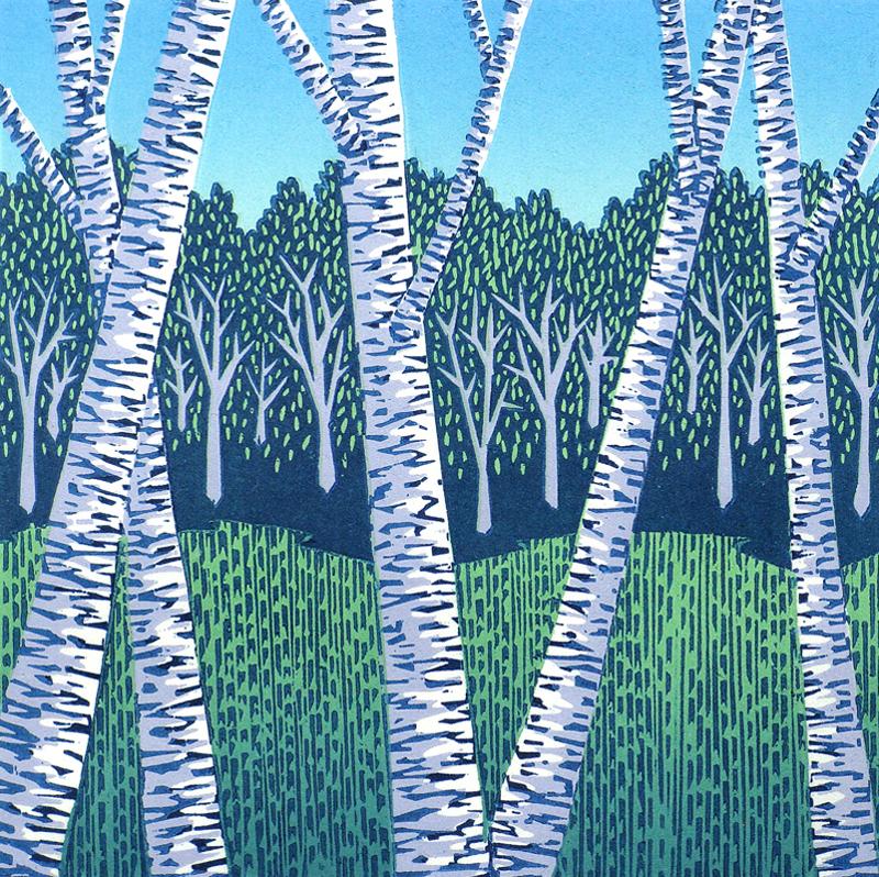 Field & Birches