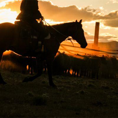 Western Dreams