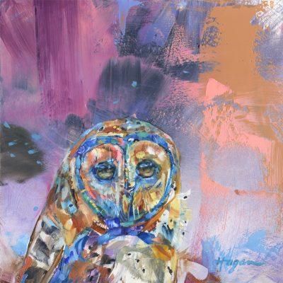 Barn Owl Nightfall