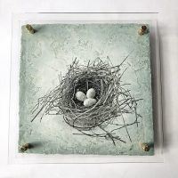 Jane Ann Kantor - Resting in the Nest of Impermanence