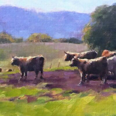 Joe Bolger - Cattle Looking West