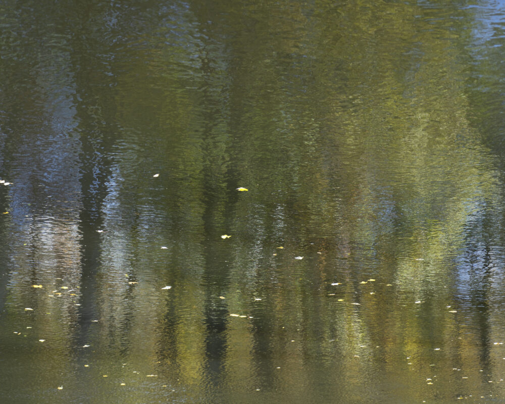 Kirsten Hoving - Waters Edge 6