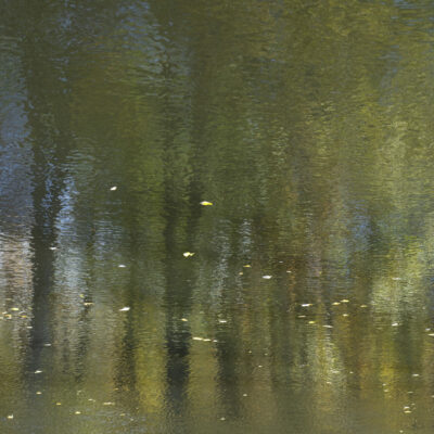 Kirsten Hoving - Waters Edge 6
