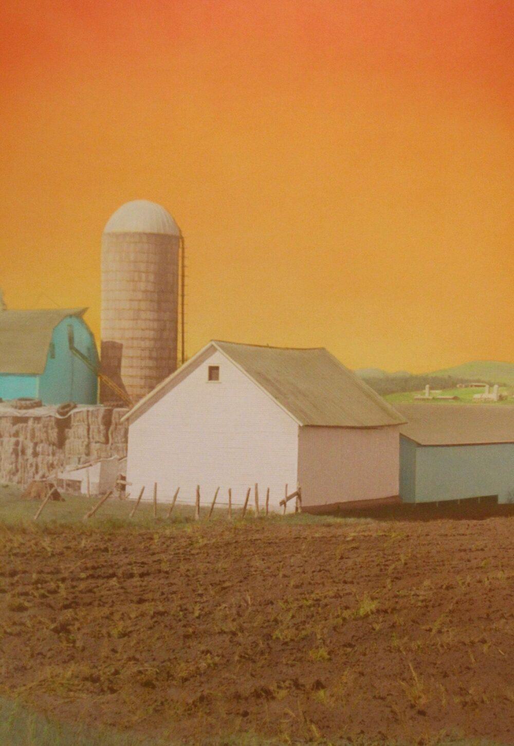 Victoria Blewer - Valley Farm