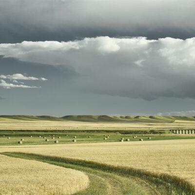 Jim Westphalen - Prairie Landscape 1