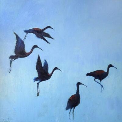 Ellen Granter - Ibis Flock