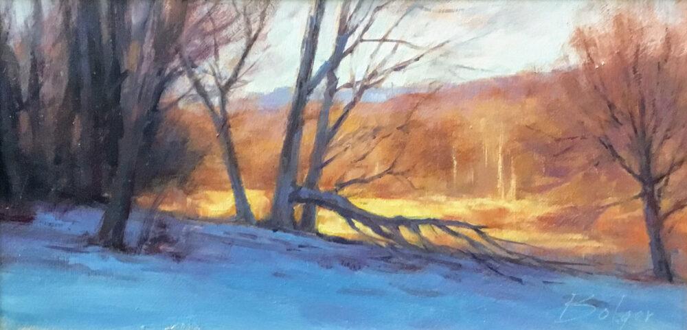 Joe Bolger - Winter's Last Light