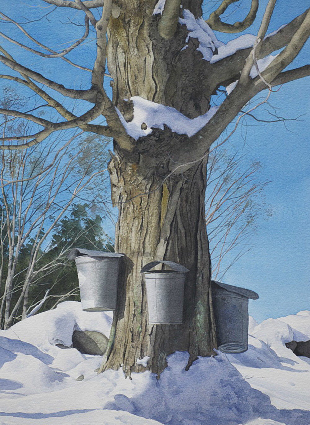 Robert O'Brien - Early Spring Buckets