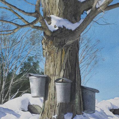 Robert O'Brien - Early Spring Buckets