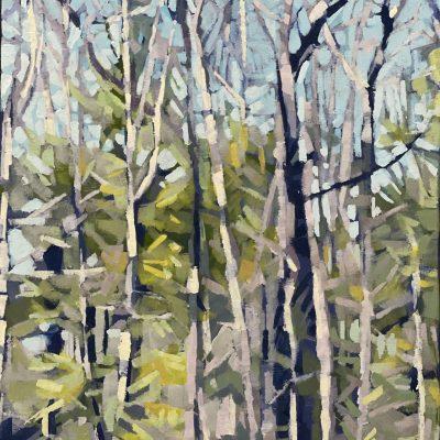 Liz Hoag - Backwoods