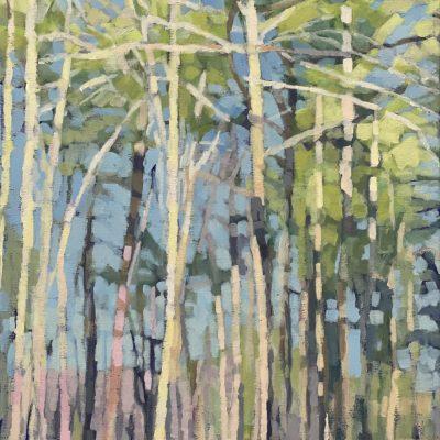 Liz Hoag - On the Trail