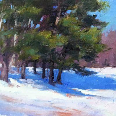 Joe Bolger - Evergreens in Winter