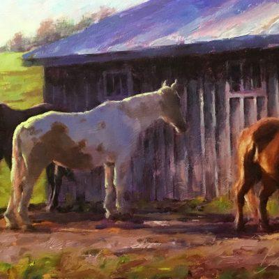 Joe Bolger - November Horses
